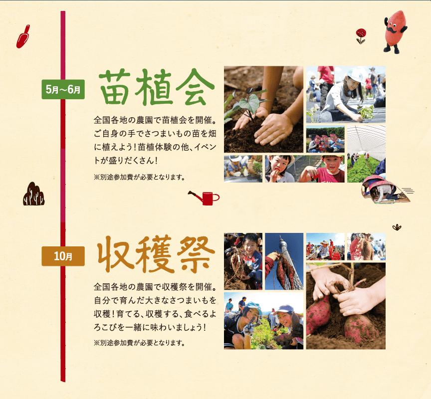 春には苗植会、秋には収穫祭の 農業体験イベント開催